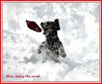 Max in snow14'